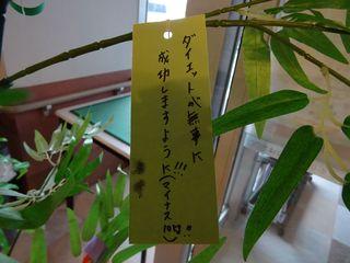 笹�E.jpg